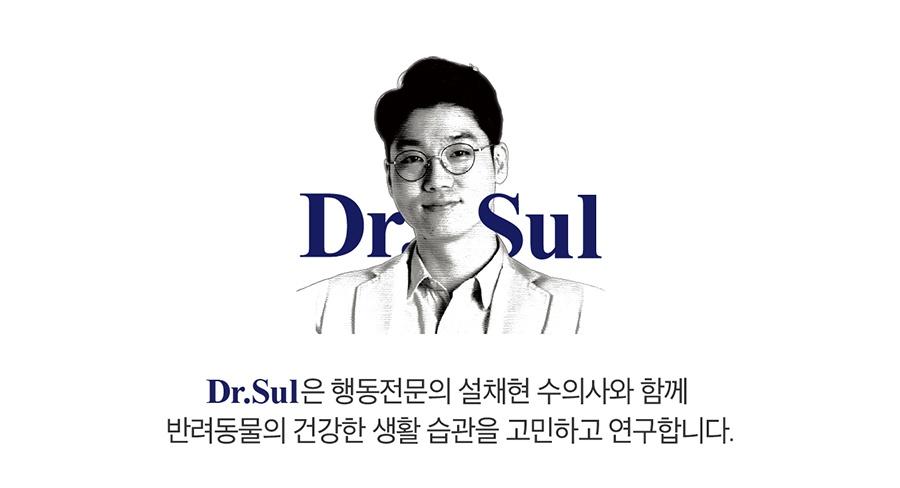 닥터설 논슬립 패드 특대용량 (50매*6개)-상품이미지-2