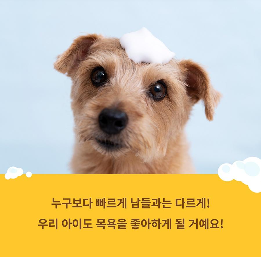 [EVENT] 포우장 보글보글 탄산샴푸-상품이미지-2