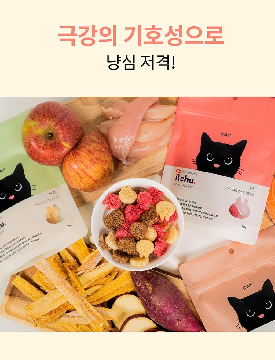 it 더 잇츄 캣 (치킨&사과/황태&고구마/연어&레드비트)-상품이미지-3