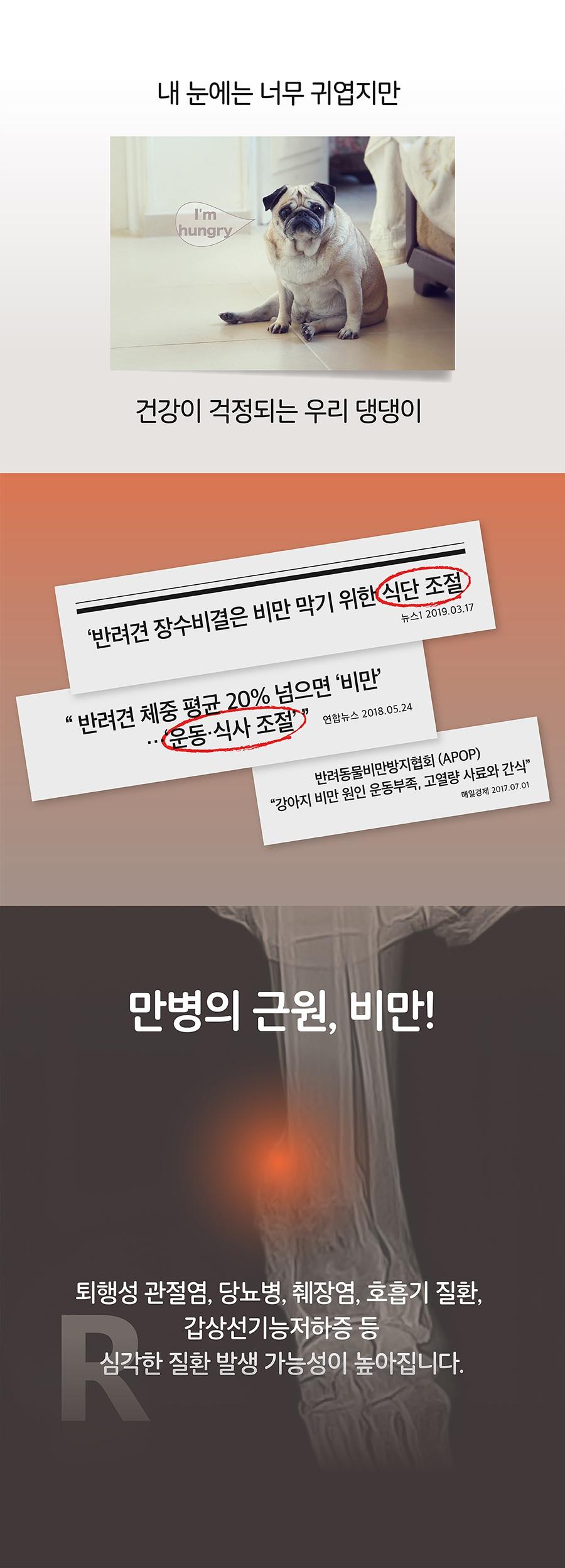 It 잇쭈 프로 도그 3종 (구강/비만/면역)-상품이미지-13